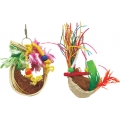 Beaks Caribbean Coco nest
